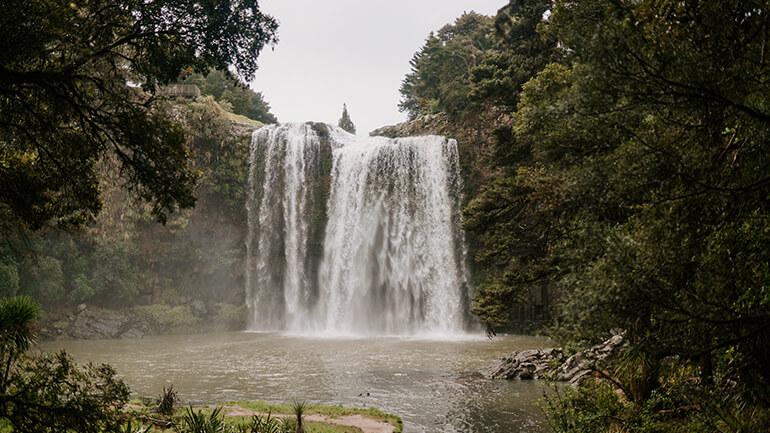 whangarei_falls_2