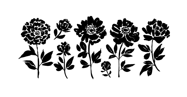 bigstock-Peony-And-Anemones-Hand-Drawn--372758413