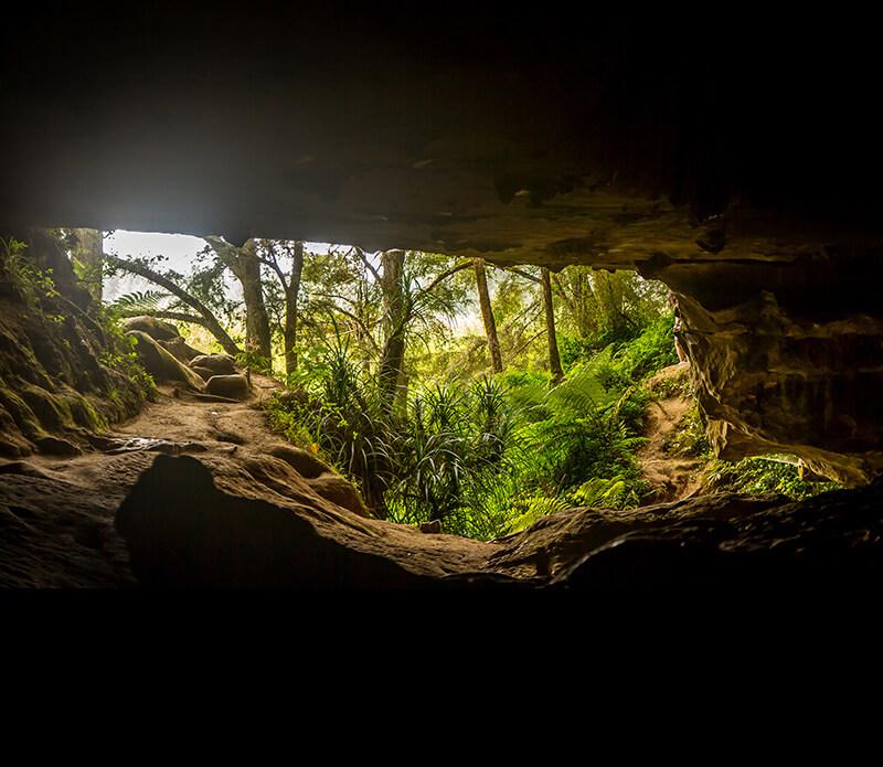 bigstock-entrance-to-waipu-caves-new-z-169002179