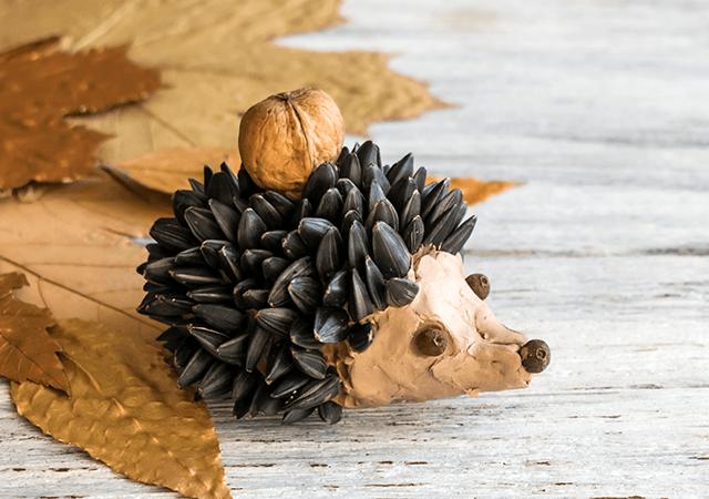 Seed-hedgehog