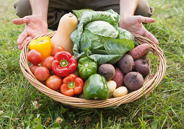 Farmer-carrying-basket-of-veg-on-a-sunny-day-640x450