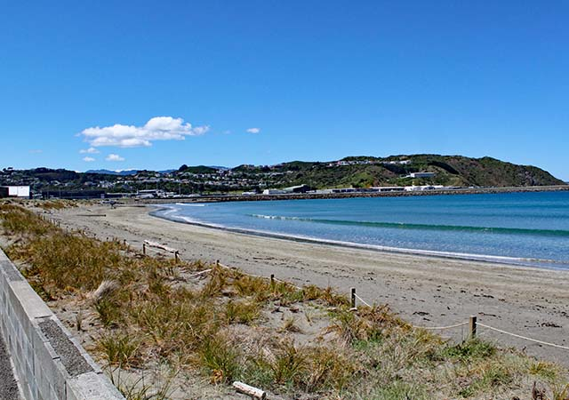 Lyall_Bay_Wellington